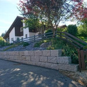 Maison et son jardin vert